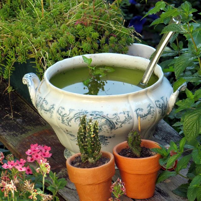Gartenterrine 😉